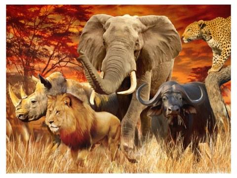 Poster splendeurs africaines