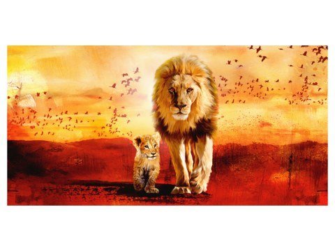 Photos de lion